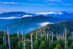 Canvas-taulu Great Smoky Mountains National Park Tennessee 2050